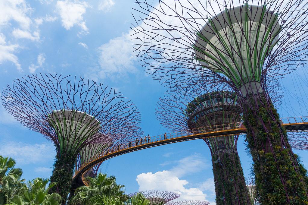 pasang togel singapure