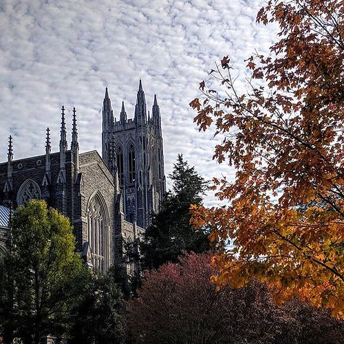 Happy November,Blue Devils! Probably the best time of the year.