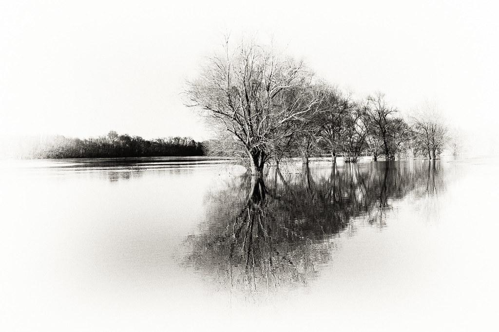Les bords de Saône.