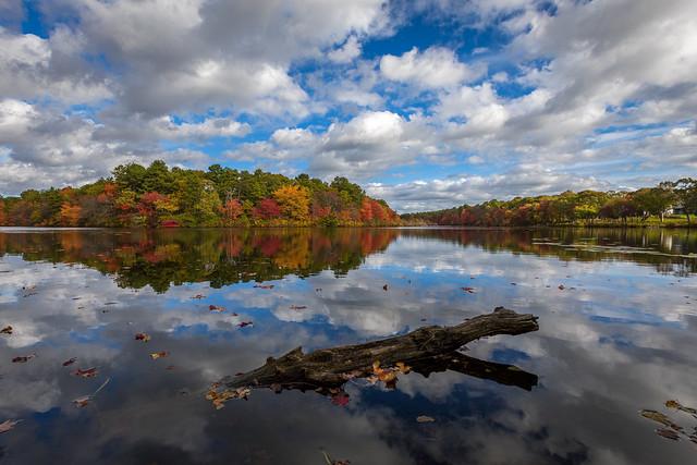 Beaverdam Pond