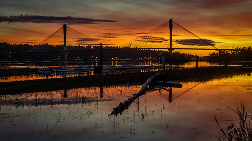 portmannbridge fraserriver trail poco portcoquitlam sunset landscape orange reflections bridge logs water shoreline river nikon d7000 dslr sky cablestayed structure dusk architecture clouds night serene outdoors fall
