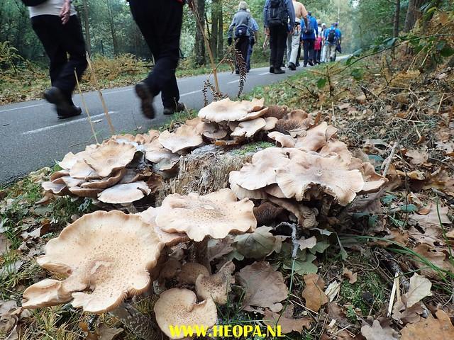 2017-10-18  Rhenen 25 Km (73)