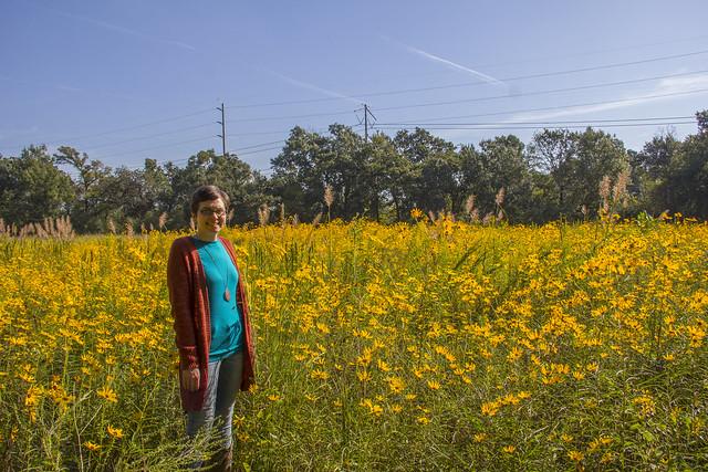 Swamp Sunflowers_40