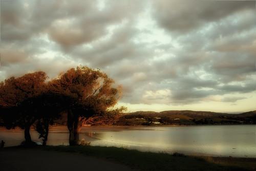 pauatahanui newzealand sky clouds outside nature
