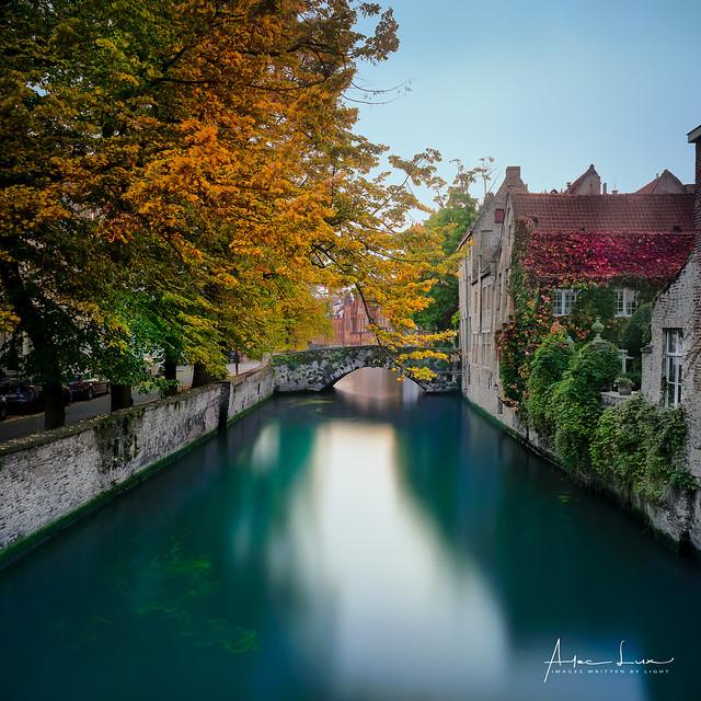 Autum Colors In Bruges II