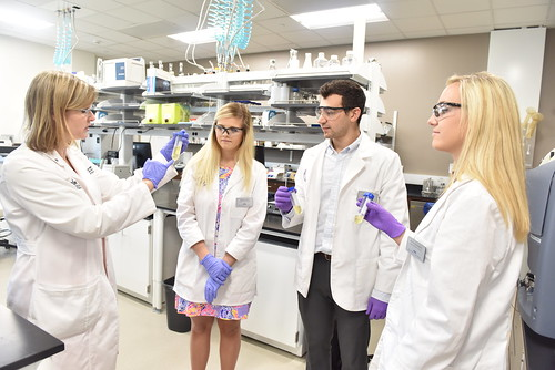 Fred Wilson School of Pharmacy by HIGH POINT UNIVERSITY