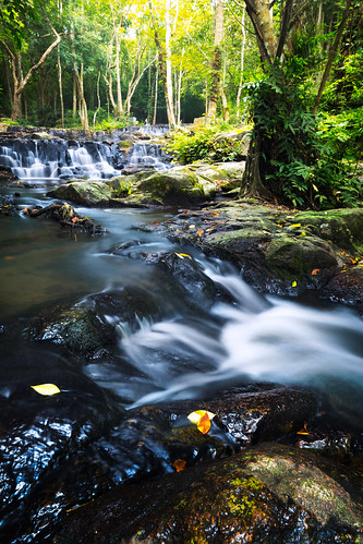 background beautiful beauty cascade clean creek environment fall flow flowing foliage forest fresh green jungle landscape leaf light moss motion mountain mountains national natural nature outdoor park peaceful plant rain rainforest river rock scenery splash spring stone stream streams summer sun tourism travel tree view water waterfall wet wild wood tambonnongplalai changwatsaraburi thailand th