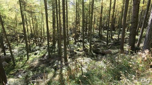 monte-legnoncino-2017-232