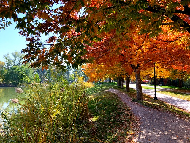 1 Pond Side in Autumn