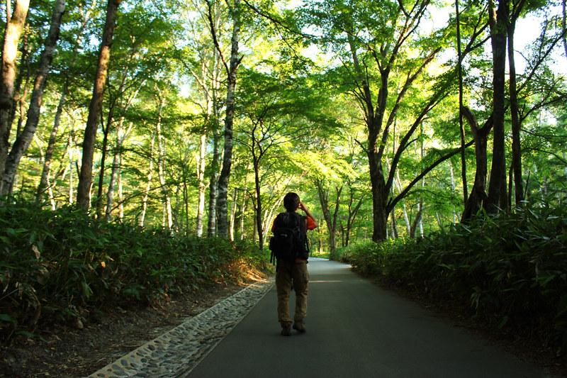 20110716_焼岳_0014