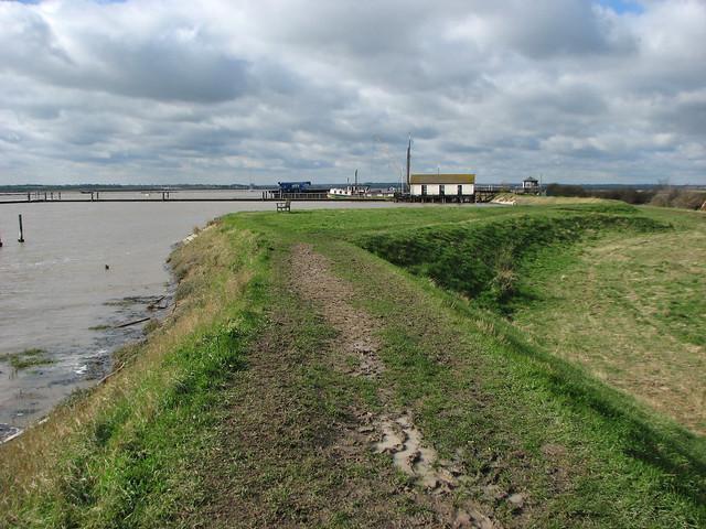 Marshes near North Fambridge