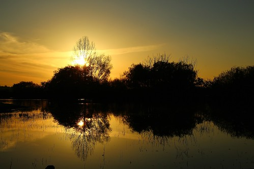 europe england cheshire outdoor nature beauty simplysuperb sunset silhouette reflections trees lake landscape greatphotographers