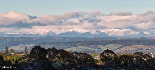 snowonmountains nelson newzealand