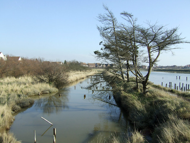 Fenn Creek, South Woodham Ferrers