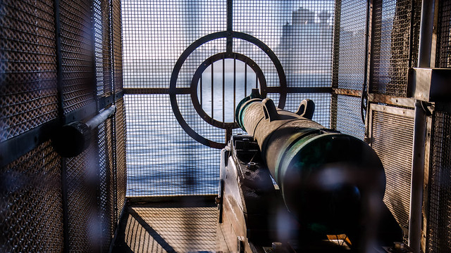 Caged Cannon