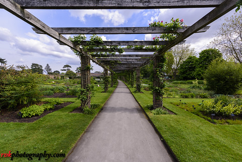 2017 april april2017 england kew kewgardens london nikkor1424mm nikon nikond810 rvk rvkphotography raghukumar raghukumarphotography wideangle wideangleimages rvkphotographycom richmond unitedkingdom gb rvkonlinecom