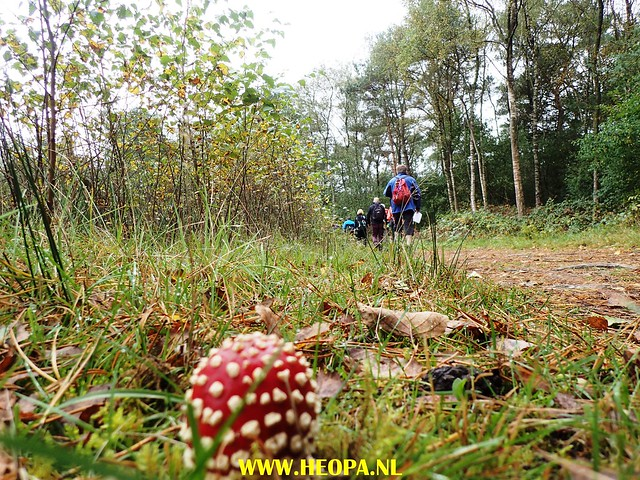 2017-10-07 Austerlitz 25 Km (45)
