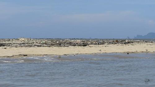 EAAF084 Krabi Estuary and Bay
