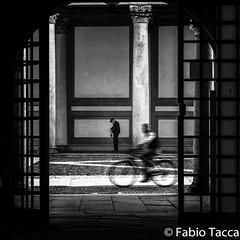 Fabio Tacca-3