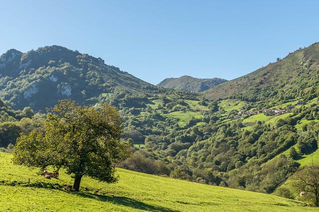 Pedroveya, Asturias
