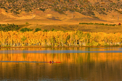 morning reflections trees fall autumn yellow boat scull sculling rowing row chatfieldstatepark lakechatfield colorado landscape landscapes