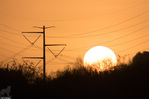 sunrise sun powerlines
