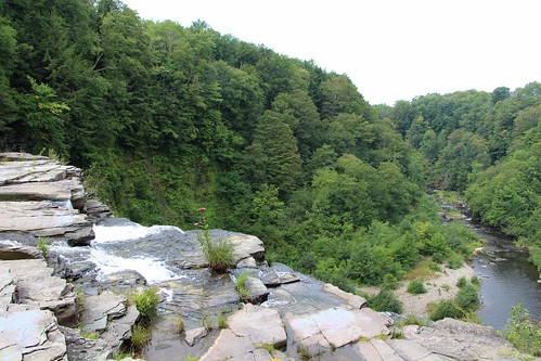 usa new york state salmon river falls attraction nature forest trail