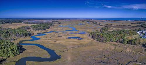 greatmarsh lewes wetlands delaware dji aerial