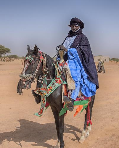 niger agadez bianou festival touareg horse