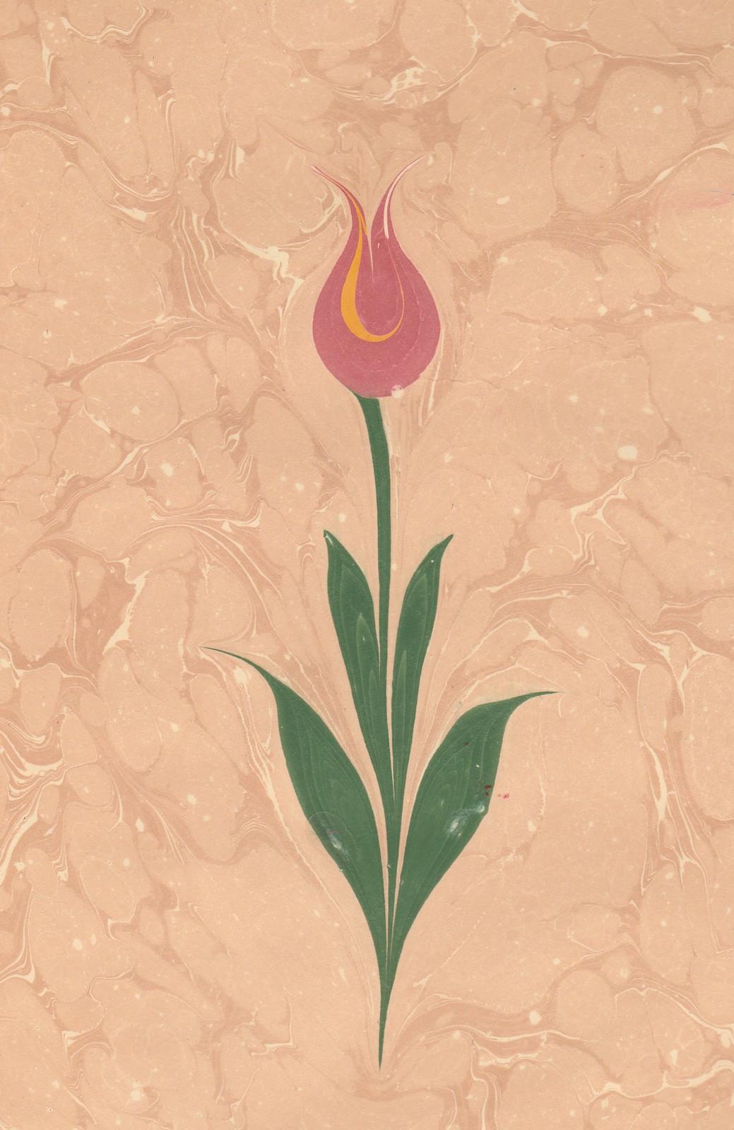 ebru lale 於伊斯坦堡繪製的浮水畫作品