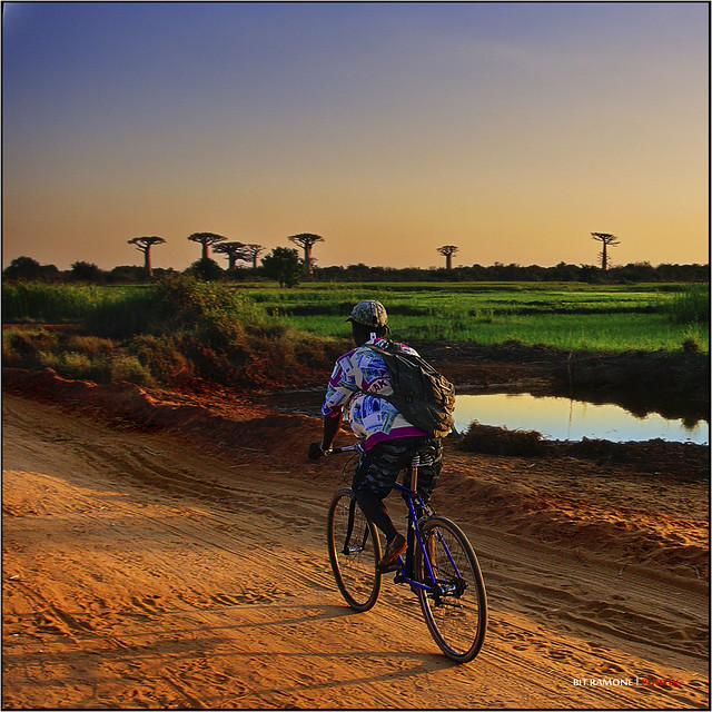 I want to ride my bycicle in Africa