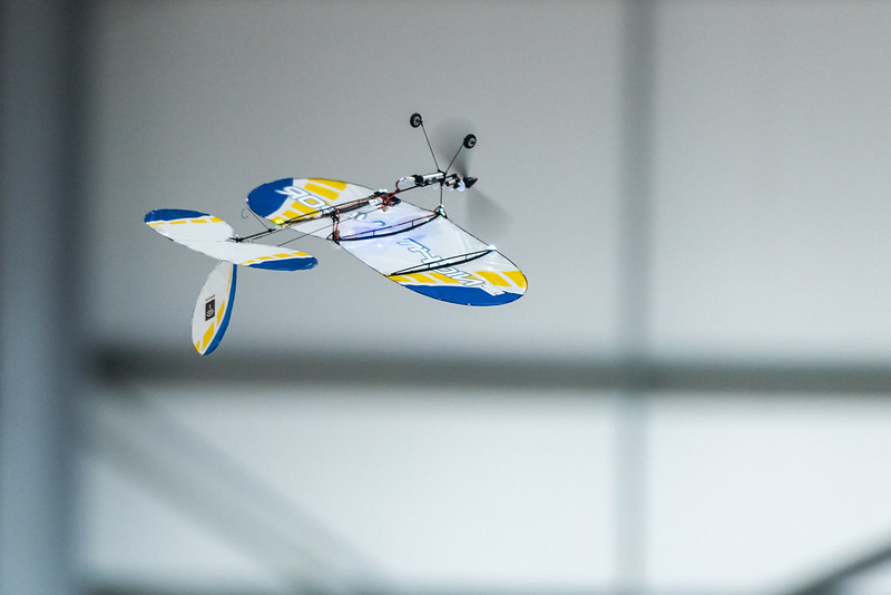 Nathan Shirley proving an E-Flite Night Vapor can fly inverted!
