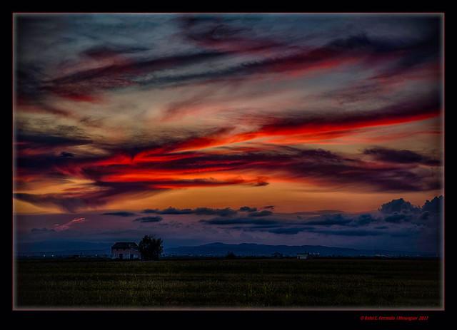 La marjal de Sueca després de l'ocàs 33 (Sueca's marsh after sunset 33) Sueca. la Ribera Baixa, València, Spain