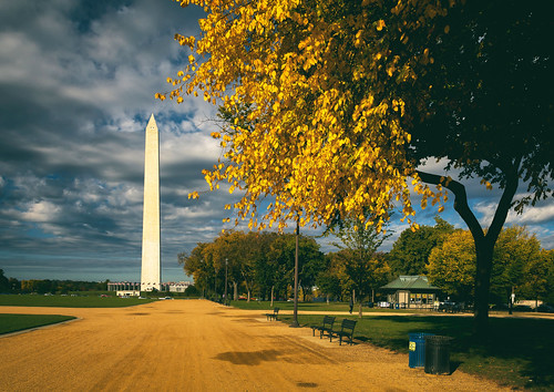 washingtonmonument nationalmall fall autumn washingtondc dc landscape fallindc washington districtofcolumbia unitedstates us