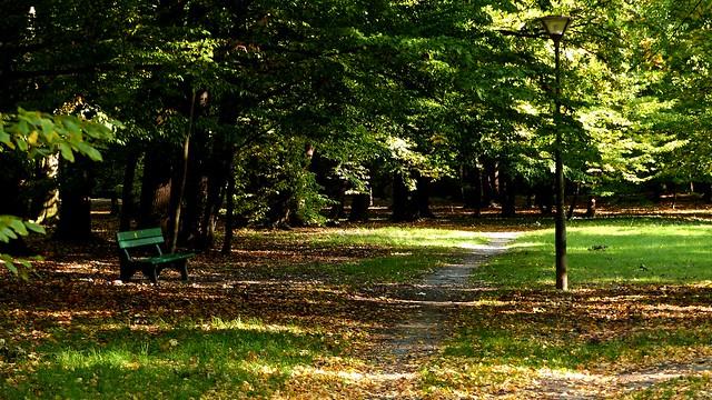 Jesień w parku.Pieszyce.
