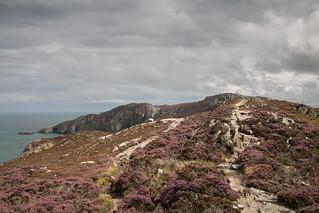 On the way to Holyhead mountain | by johnkaysleftleg