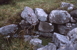 Edge of old rabbit pit trap. Pant Mawr, upper Nedd. May 1989