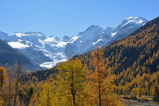 Autunno a Morteratsch (Engadina)