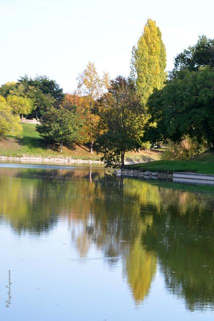 Vifs reflets d'automne aux couleurs à peine changeantes