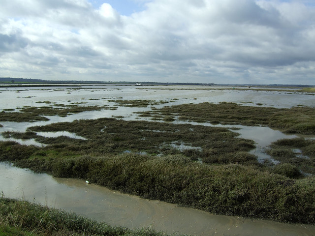 The River Crouch at North Fambridge