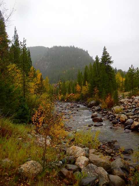 Roosevelt National Forest trail head along the Poudre River