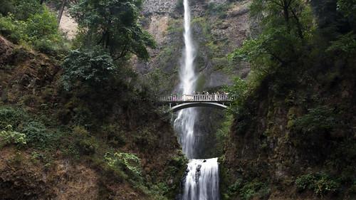 falls oregon multnomah forest