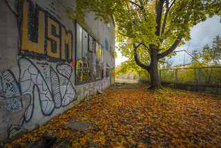 Autum | by Andreas Luft