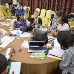 AFR100 - Second annual partners meeting in Niamey, Niger