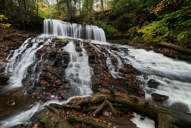 Mohawk Falls - Ricketts Glen State Park