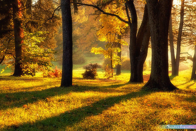 Autumn in My Heart *A Beautiful Nature*