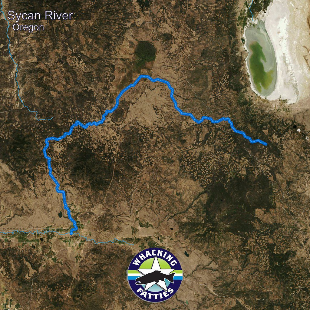 Sycan River, Oregon | Sycan River, Oregon Fly Fishing Report