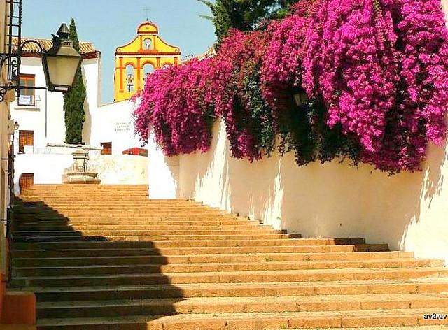 Paseando por Córdoba.