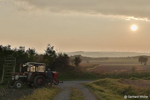 field work arbeit sonne sun sunset traktor