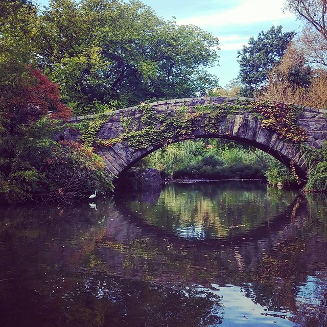 The gorgeous gapstow bridge with egret nearby